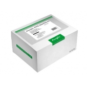 AmoyDx® Circulating DNA Kit