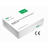 Human Papillomavirus (HPV) Genotyping Detection Kit