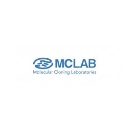 https://www.carolinabiosystems.cz/107-thickbox_default/dna-homopolymeric-tailing-super-mix-kit.jpg