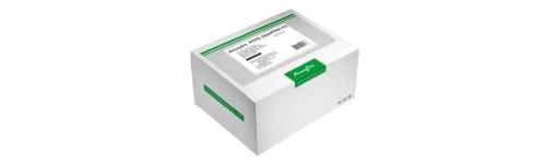 AmoyDx Real-time PCR kits